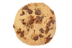 Chocolate Chip Cookie Imagen de archivo libre de regalías