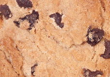 Chocolate chip cookie abstract Royalty Free Stock Image