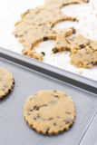 Chocolate chip cookie on baking sheet Stock Photos