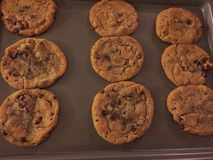 Chocolate chip cookie. Home mad chocolate chip cookie Stock Photos