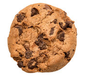 Chocolate chip cookie Stock Photography