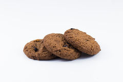 Chocolate chip cookie. Isolated on white background royalty free stock photos