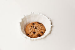 Chocolate Chip Cookie in milk Stock Photography