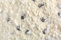 Chocolate chip cookie mix close view Stock Photography