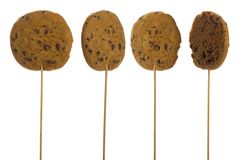 Chocolate chip cookie on a stick Royalty Free Stock Photos