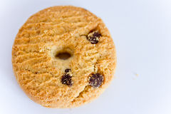 A chocolate chip cookie on white. A shot of a cookie on a white background royalty free stock photos
