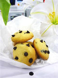 Chocolate chip cookie. On white background Royalty Free Stock Images