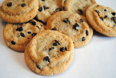 Chocolate Chip Cookies. In a pile. Image taken on Feb. 12, 2010 royalty free stock image