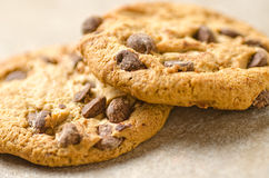 Chocolate Chip Cookies. Close-up of chocolate chip cookies against a plain background Royalty Free Stock Image