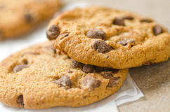 Chocolate Chip Cookies. Against a plain background Royalty Free Stock Photography