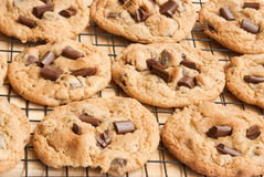 Chocolate chip cookies. Right out of the oven onto a cooling rack Stock Photo