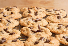Chocolate chip cookies. On a cooling rack. Selective focus on bottom half of image Royalty Free Stock Images