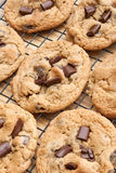 Chocolate chip cookies. Homemade chocolate chip cookies cooling on a rack Stock Photos