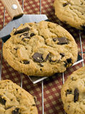Chocolate Chip Cookies Imagem de Stock Royalty Free