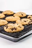 Chocolate Chip Cookies Foto de Stock Royalty Free