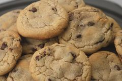 Chocolate Chip Cookies. Pile of hot baked chocolate chip cookies out of the oven stock image