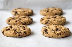 Chocolate Chip Cookies Fotos de archivo