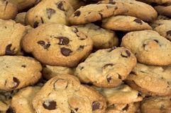 Free Chocolate Chip Cookies Royalty Free Stock Images - 763019
