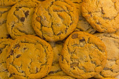 Chocolate Chip Cookies Royalty Free Stock Image