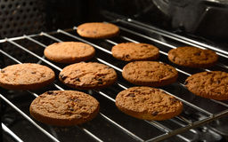 Chocolate chip cookies baking in home oven. Royalty Free Stock Photos