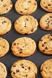 Chocolate chip cookies on baking sheet Stock Photography