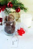 Chocolate chip cookies in the bank, especially left for Santa Claus. Christmas and New Year: chocolate chip cookies in the bank, especially left for Santa Claus Stock Image