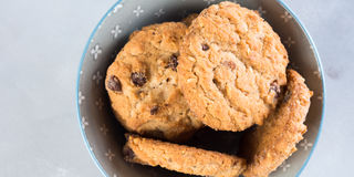 Chocolate chip cookies in bowl on gray background. Banner Stock Photos