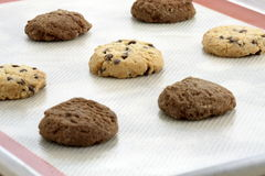 Chocolate chip cookies and chocolate cookies royalty free stock photos