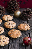 Chocolate Chip Cookies at Christmas Time Royalty Free Stock Photo