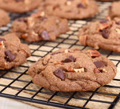 Chocolate Chip Cookies Closeup Imagenes de archivo