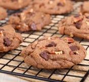 Chocolate Chip Cookies Closeup Imagenes de archivo