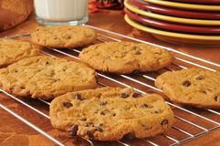 Chocolate chip cookies on a cooling rack Royalty Free Stock Images
