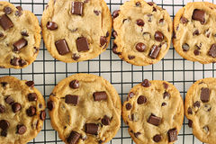 Chocolate chip cookies on cooling rack upclose Royalty Free Stock Images
