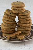 Chocolate chip cookies on crockery plate Stock Images