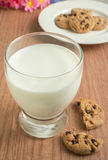 Chocolate chip cookies and glass of milk Stock Image