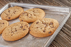 Chocolate chip cookies homemaid,baked Royalty Free Stock Photography