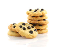 Chocolate chip cookies isolated on white background. Stock Photography