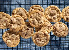 Free Chocolate Chip Cookies On A Cooling Rack Stock Image - 165696201