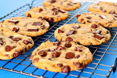 Chocolate Chip Cookies On Rack Blue Background Stock Photo