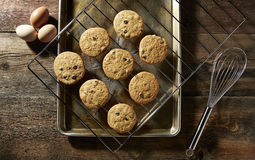 Chocolate Chip Cookies From the Oven. Chocolate Chip Cookies on wire rack Stock Photography