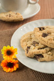 Chocolate chip cookies on plate Stock Photo