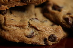 Chocolate Chip Cookies on Plate. Chocolate Chip Cookies on Burgundy Plate royalty free stock photography