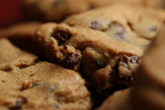 Chocolate Chip Cookies on Plate 10. Chocolate Chip Cookies on Burgundy Plate 10 stock photos