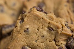 Chocolate Chip Cookies on Plate 8. Chocolate Chip Cookies on Burgundy Plate 8 royalty free stock image