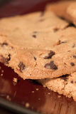 Chocolate Chip Cookies on Plate 1. Chocolate Chip Cookies on Burgundy Plate 1 royalty free stock images