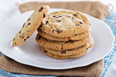 Chocolate chip cookies on a plate Royalty Free Stock Photos