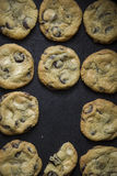 Chocolate chip cookies Stock Image