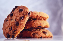 Chocolate chip. Cookies; tasty dessert Royalty Free Stock Image