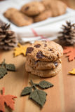 Chocolate chip cookies. With Warm Fall Colours Stock Photography