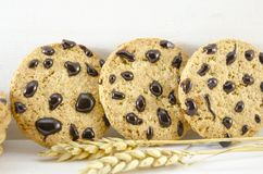 Chocolate chip cookies and wheat Royalty Free Stock Photography